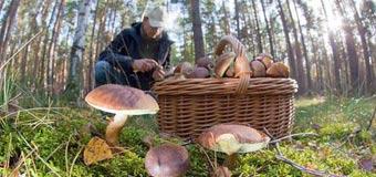 Техника безопасности при походе в лес за грибами